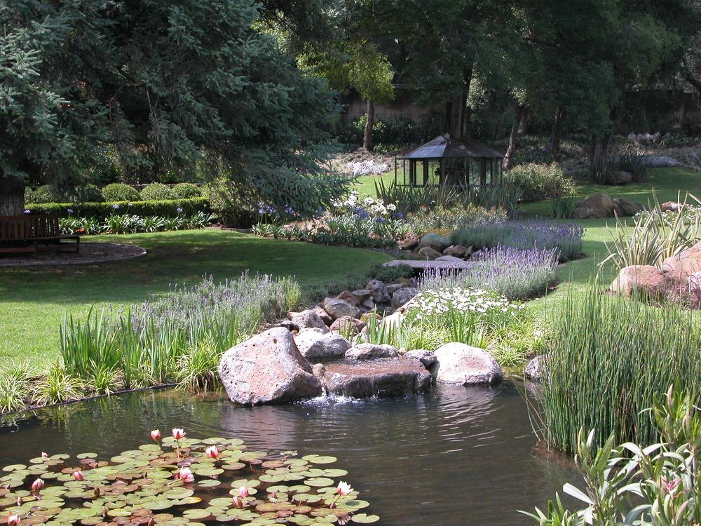 estanque en jardin japones