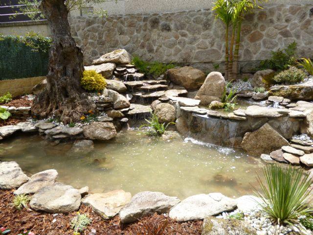 Como hacer un estanque con plantas peces tortugas for Estanque pequeno